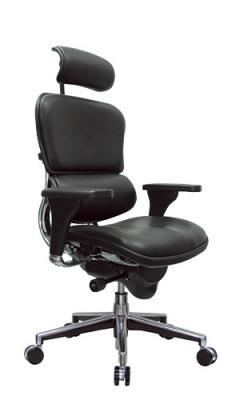 Ergohuman High Back Leather Chair