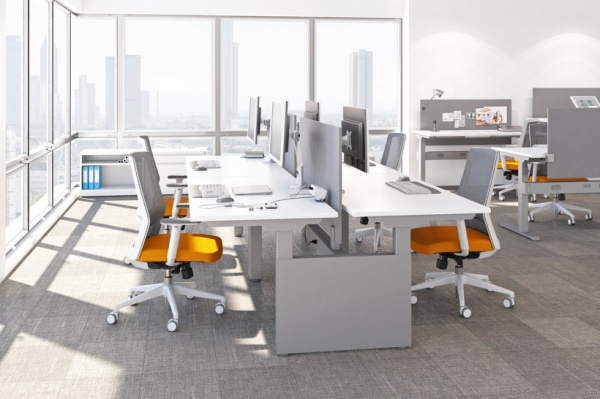 AMQ Kinex Sit-to-Stand Benching