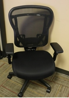 Rika Mesh Back Task Chair with Fabric Seat