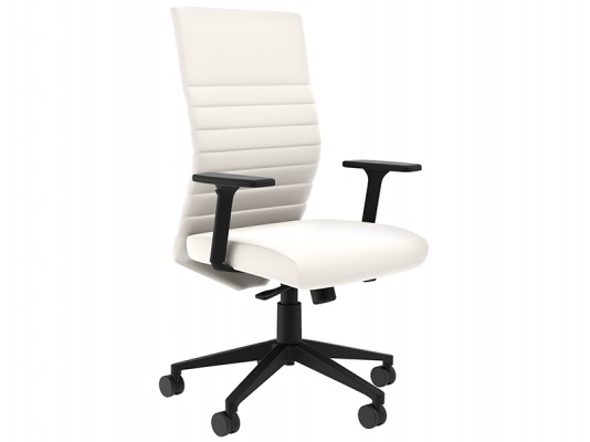 Maxim LT Task/Conference Chair