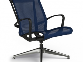 Cydia Mesh Lounge Chair